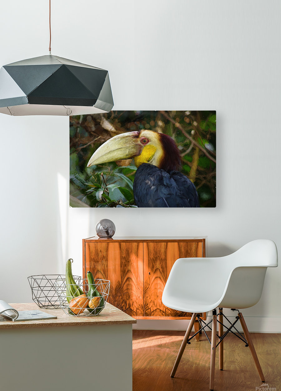 Toucan  HD Metal print with Floating Frame on Back