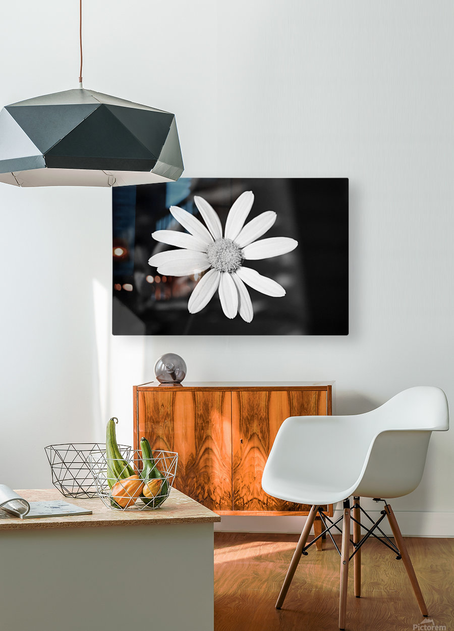 Beautifully White B&W  HD Metal print with Floating Frame on Back