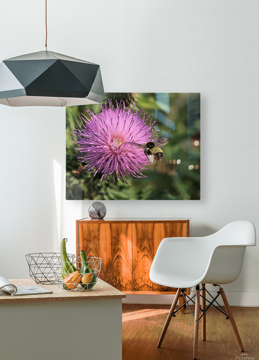 Final Approach Inbound  HD Metal print with Floating Frame on Back