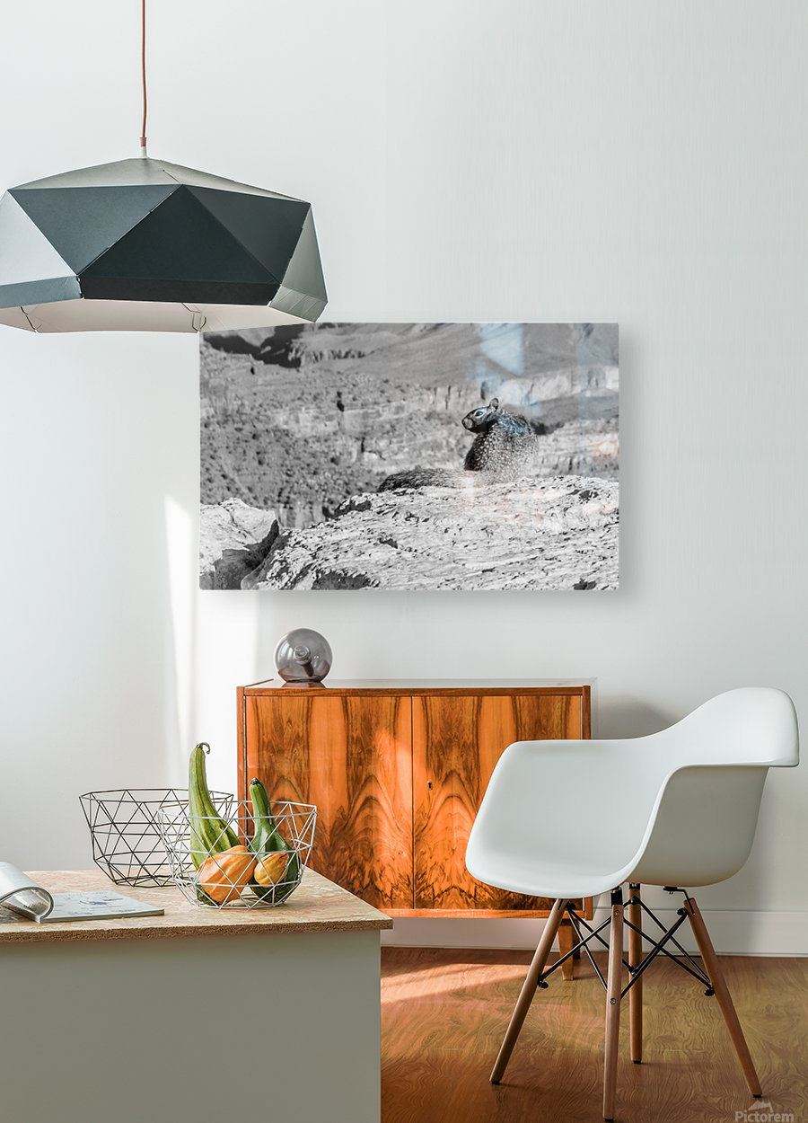 Grand Canyon South Rim  HD Metal print with Floating Frame on Back