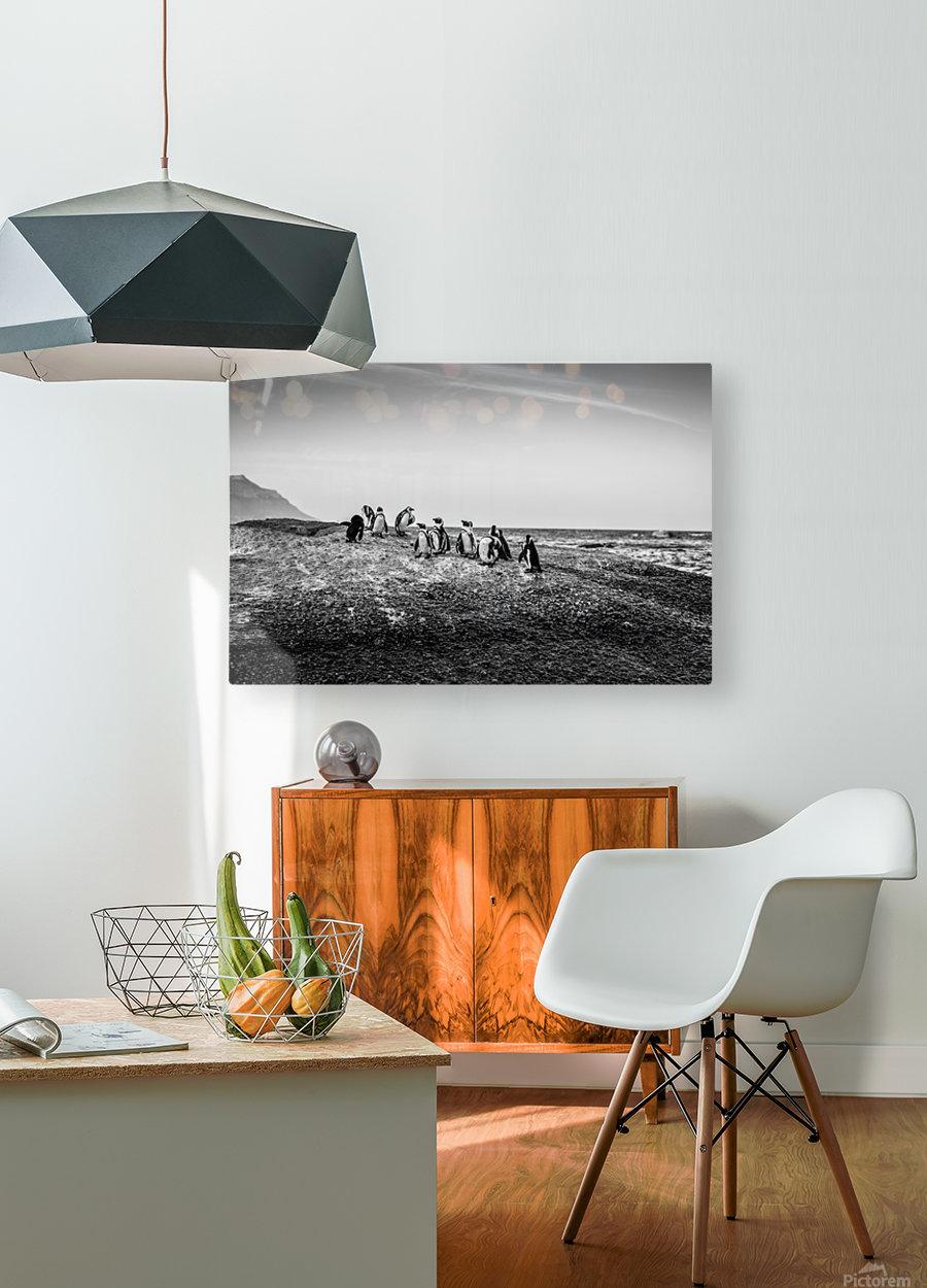 Black Tie Bonanza  HD Metal print with Floating Frame on Back