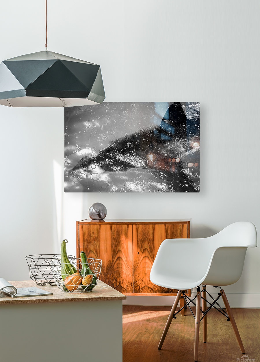 The Beauty and Beast Beneath  HD Metal print with Floating Frame on Back
