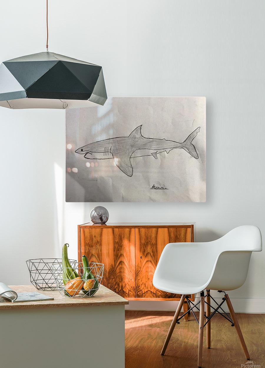 Shark Image  HD Metal print with Floating Frame on Back