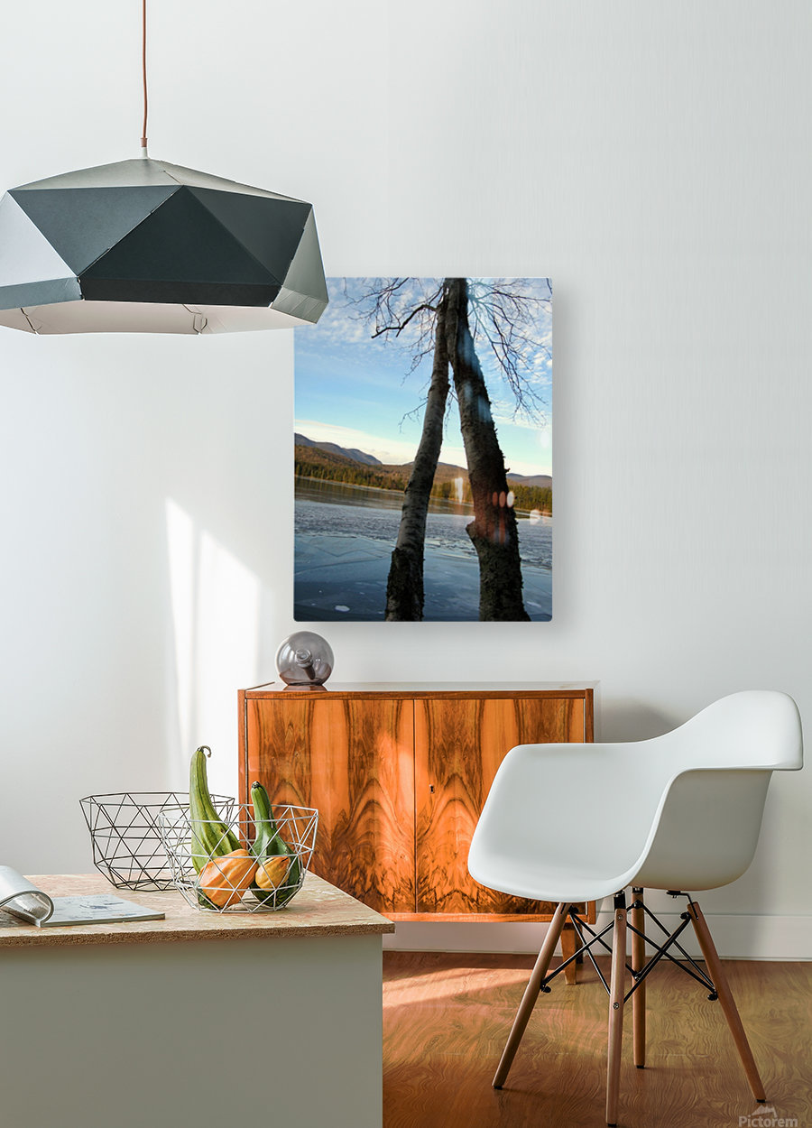 Love at the Lake  HD Metal print with Floating Frame on Back