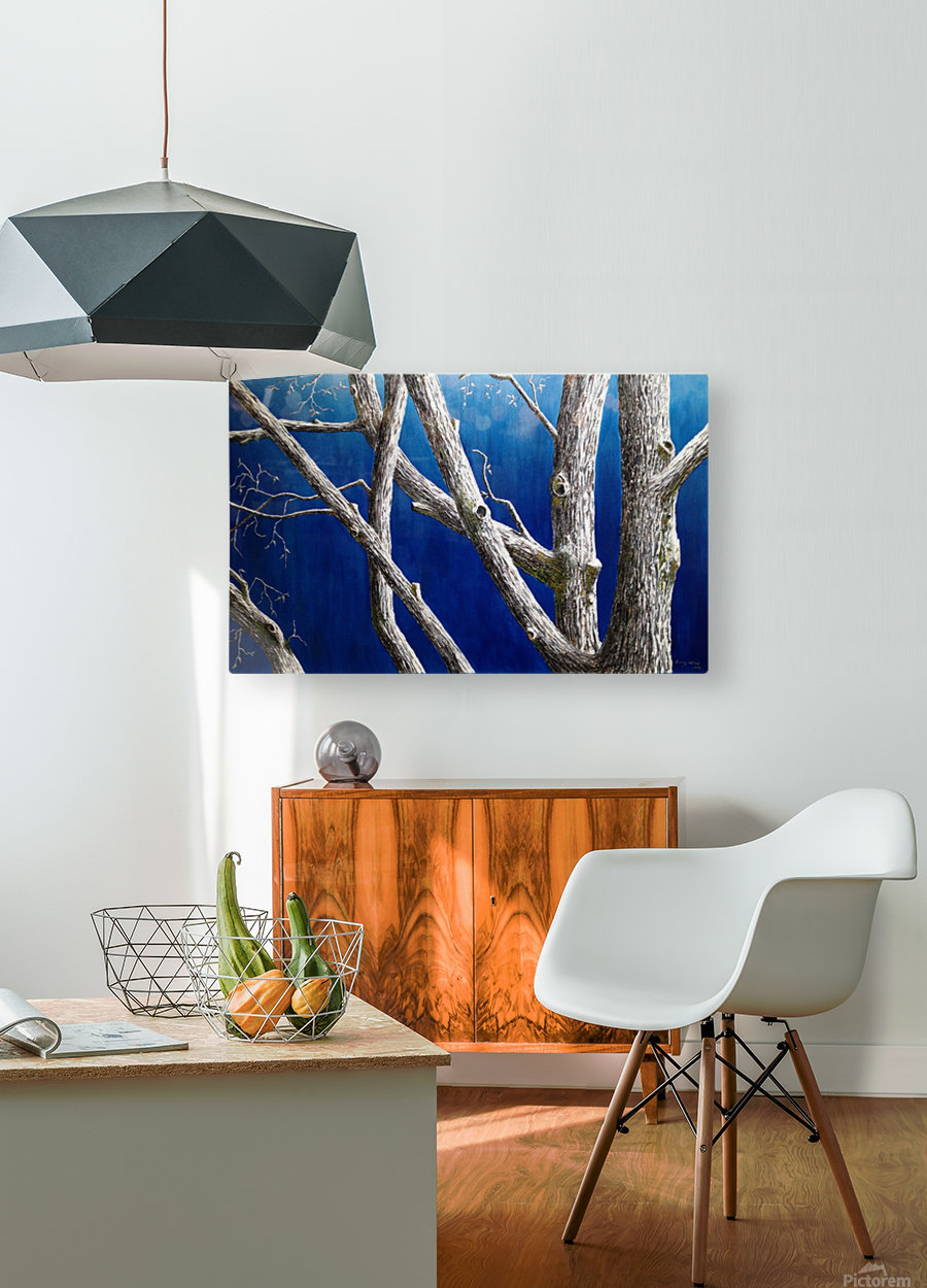 Trees at Dusk  HD Metal print with Floating Frame on Back