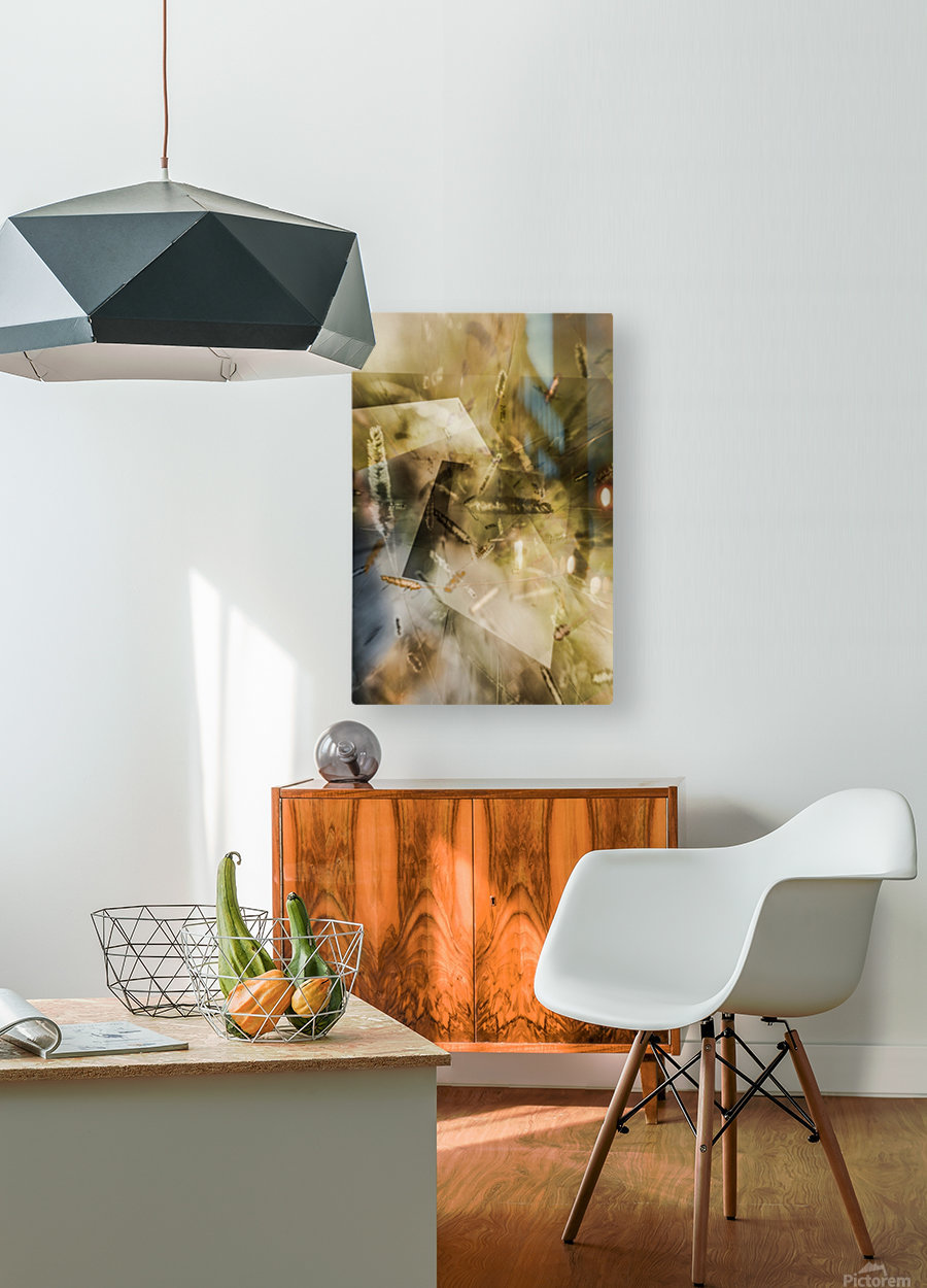 Sweet Grass    HD Metal print with Floating Frame on Back