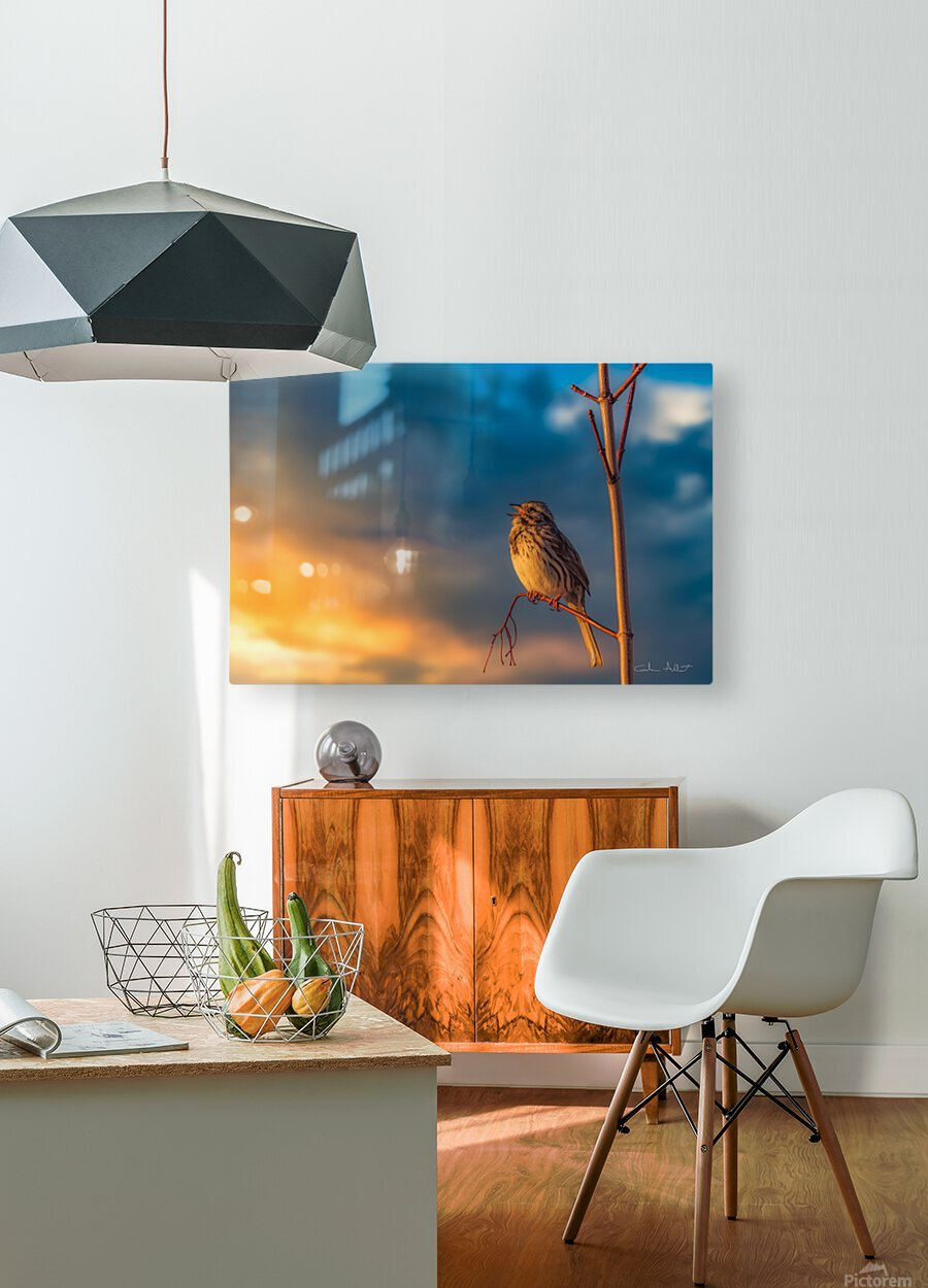Bruant chanteur  HD Metal print with Floating Frame on Back
