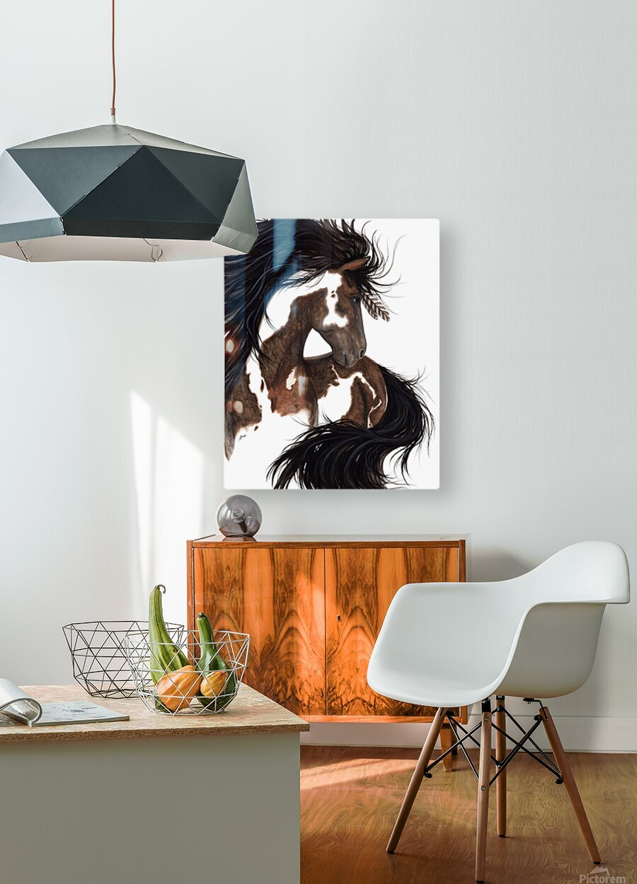 Pinto Horse  HD Metal print with Floating Frame on Back