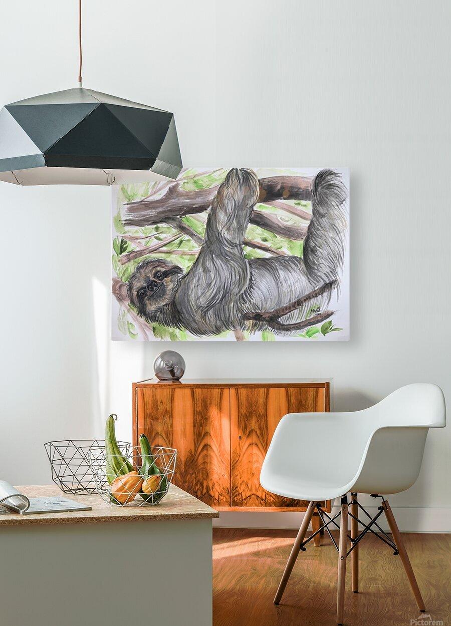 Collection COSTA RICA-Sloth  Impression métal HD avec cadre flottant sur le dos