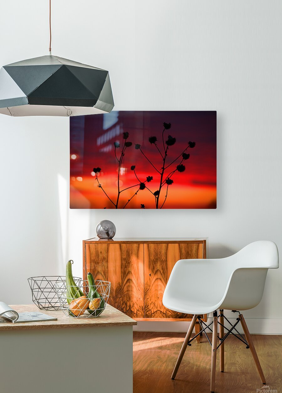 Liberty Sunset  HD Metal print with Floating Frame on Back