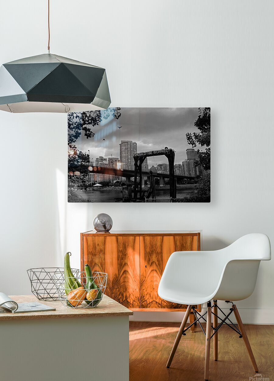 Should I Be Worried  HD Metal print with Floating Frame on Back