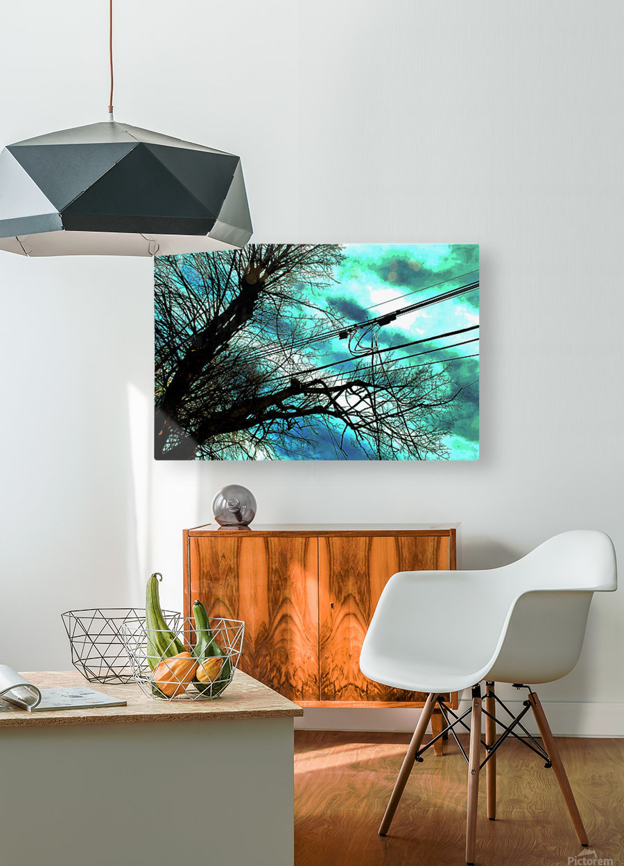 FIELDING 2  HD Metal print with Floating Frame on Back