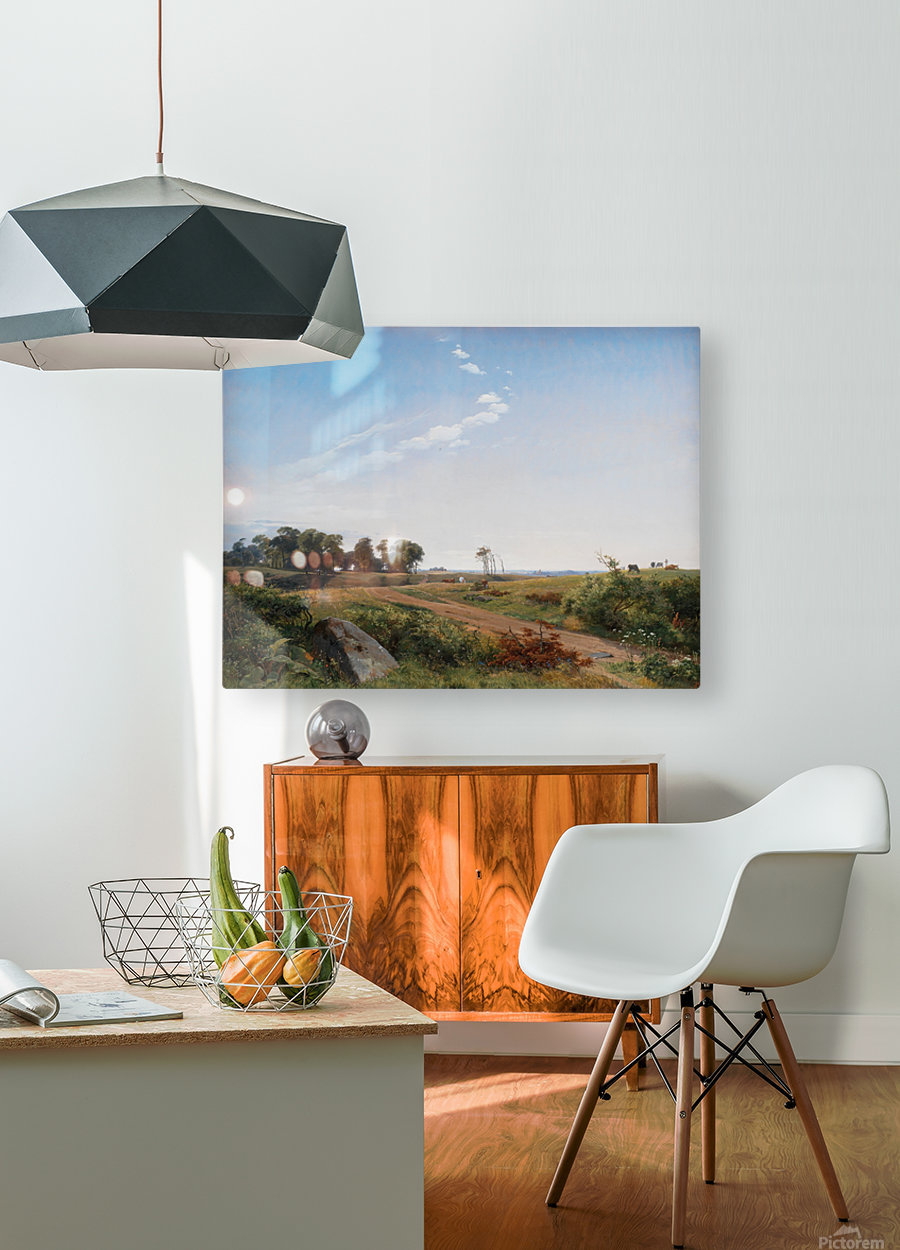Zealand Landscape. Open Country in North Zealand  HD Metal print with Floating Frame on Back