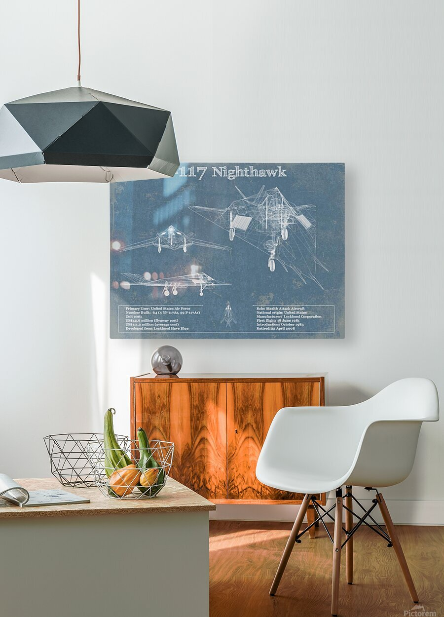 nighthawk  HD Metal print with Floating Frame on Back