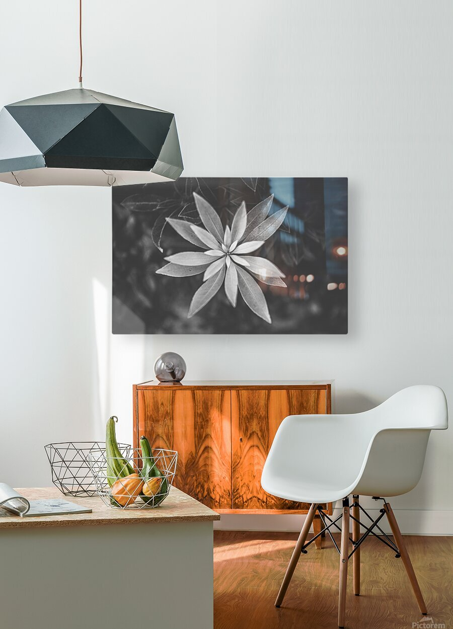 Symmetry of the nature  HD Metal print with Floating Frame on Back
