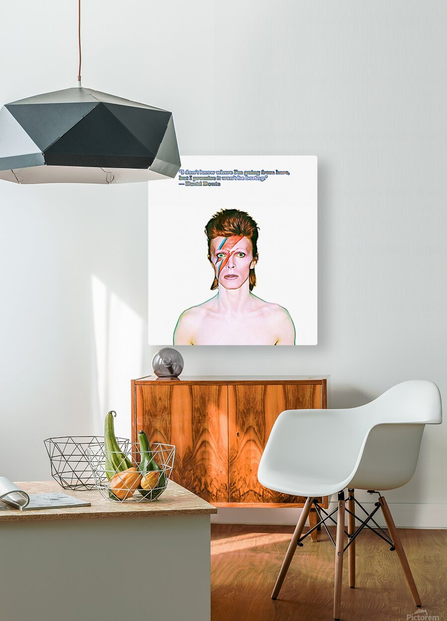David Bowie Ziggy Stardust  HD Metal print with Floating Frame on Back