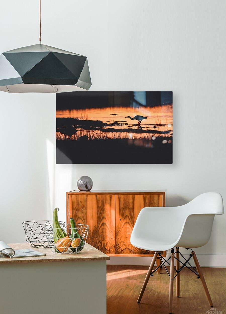 Heron hunt  HD Metal print with Floating Frame on Back