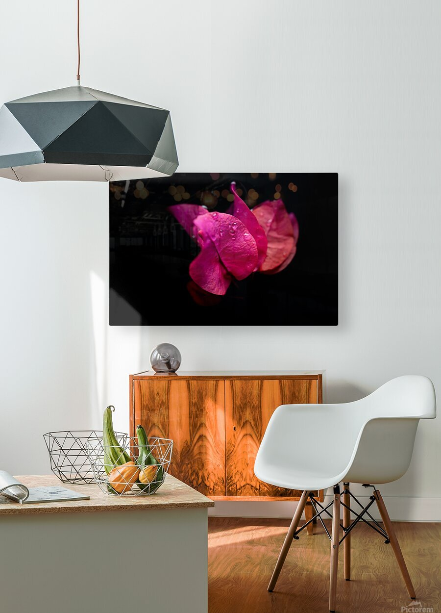 Subtlety  HD Metal print with Floating Frame on Back