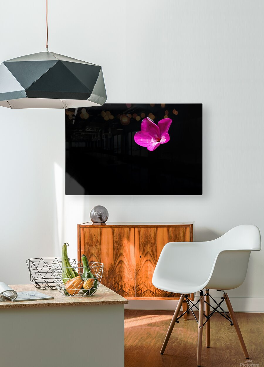 Vibrant  HD Metal print with Floating Frame on Back