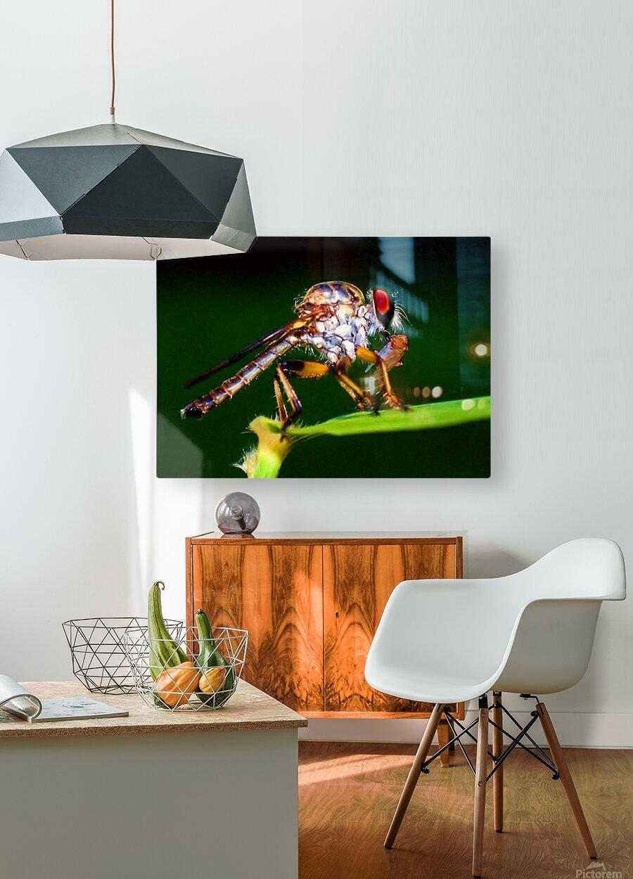 20200918_110304  Impression métal HD avec cadre flottant sur le dos