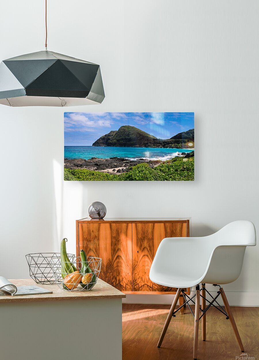 Hawaii Mountain Cliff on Coast  HD Metal print with Floating Frame on Back