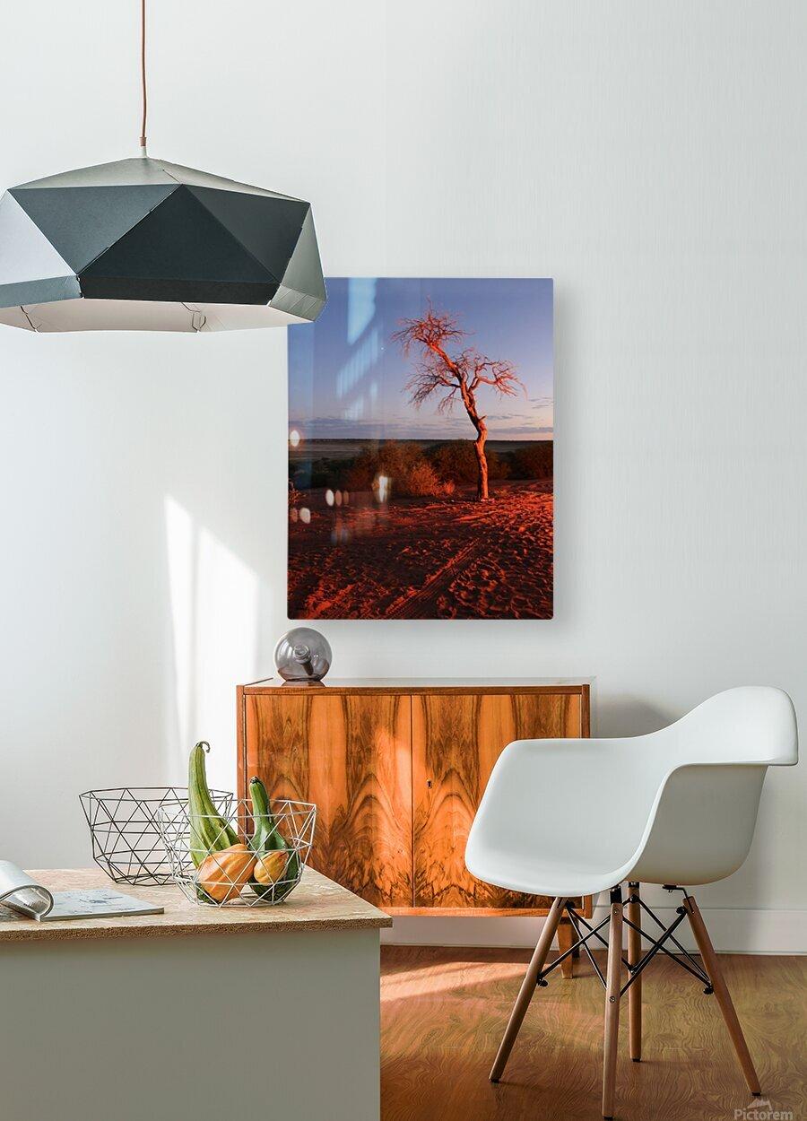 AdriaanPrinsloo 7215  HD Metal print with Floating Frame on Back
