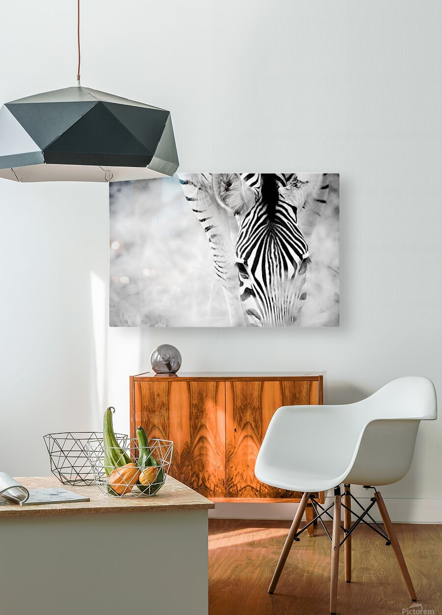 AdriaanPrinsloo 6718  HD Metal print with Floating Frame on Back