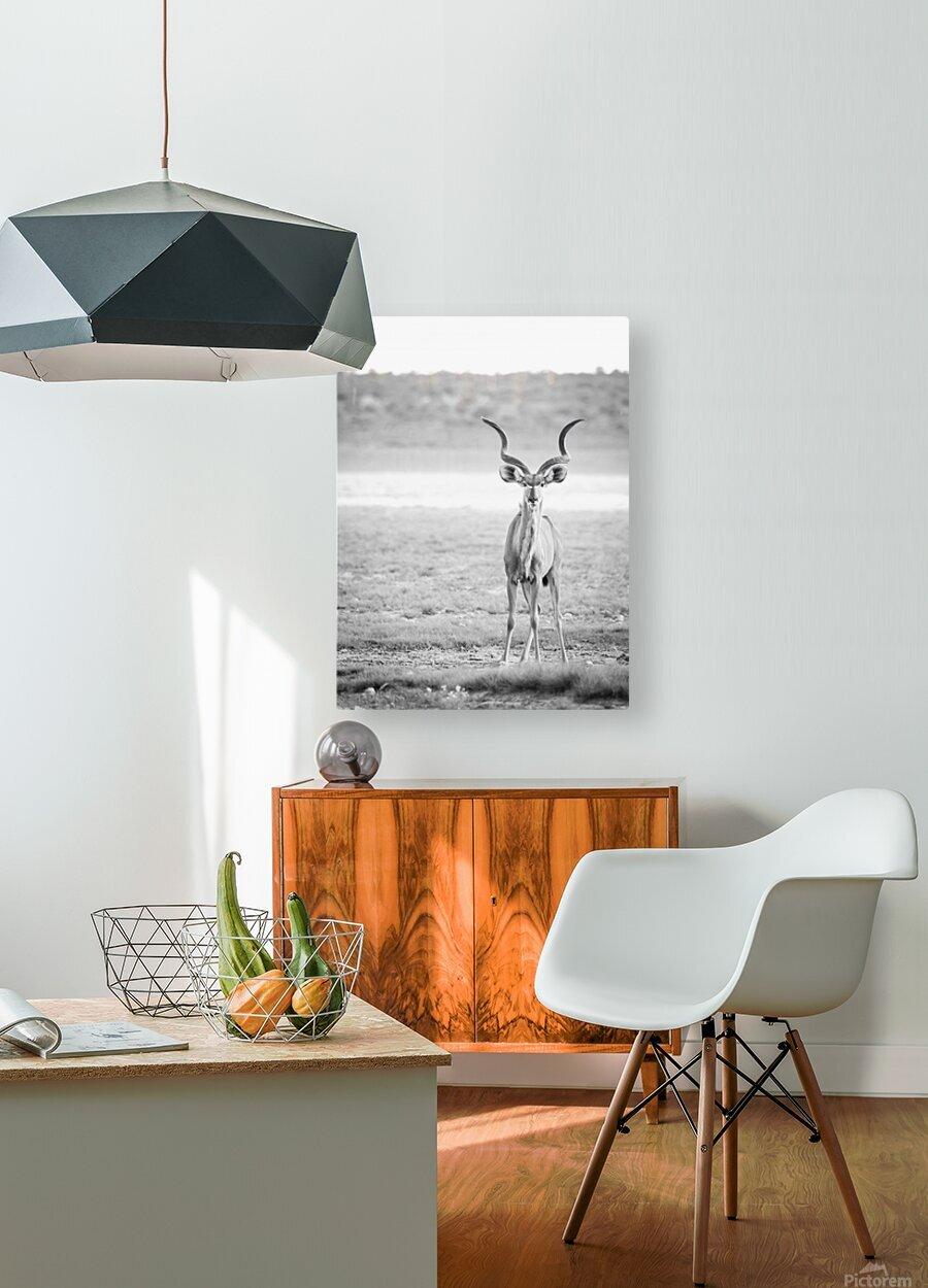 AdriaanPrinsloo 6071  HD Metal print with Floating Frame on Back