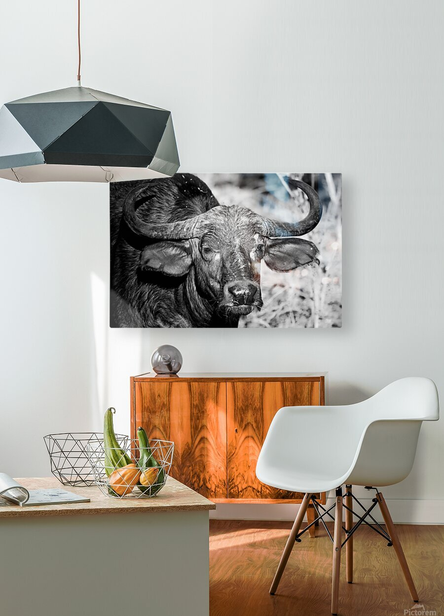 AdriaanPrinsloo 17077  HD Metal print with Floating Frame on Back