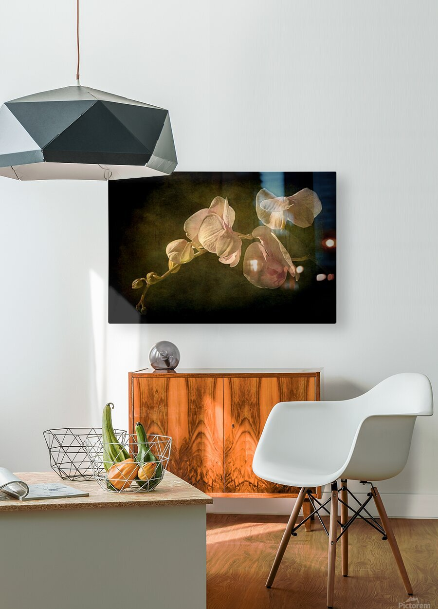 Orchid  HD Metal print with Floating Frame on Back