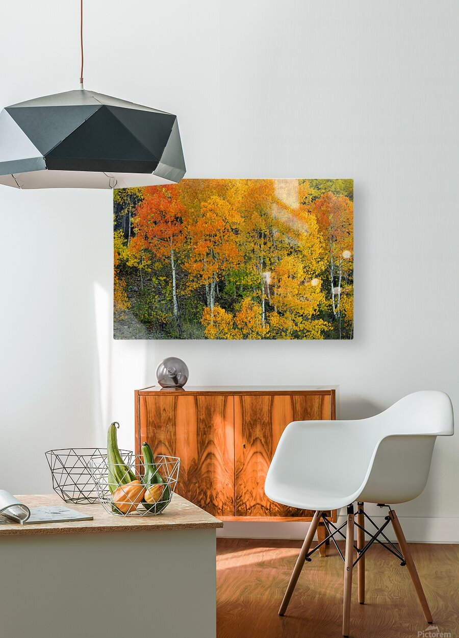 AUTUMN SERENITY   HD Metal print with Floating Frame on Back