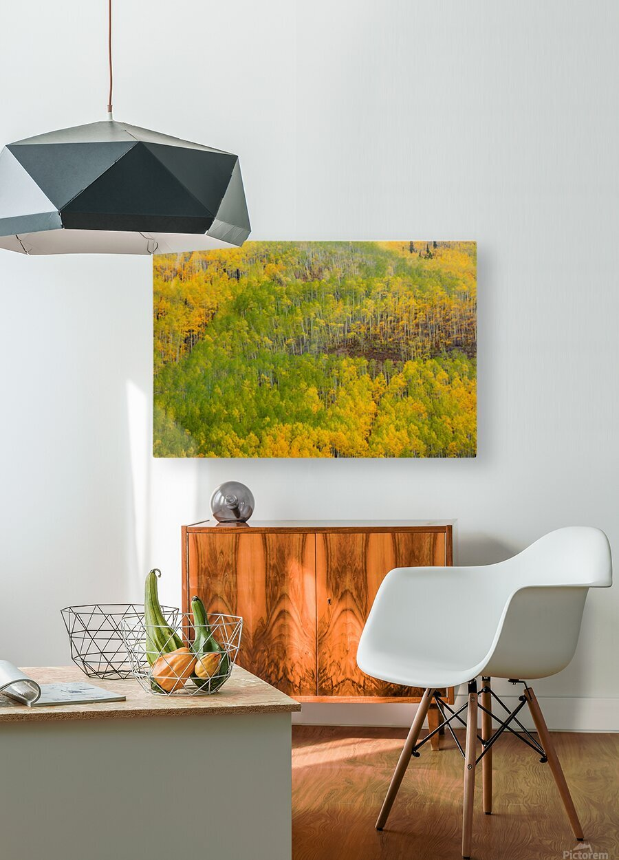 TRANSITION   HD Metal print with Floating Frame on Back
