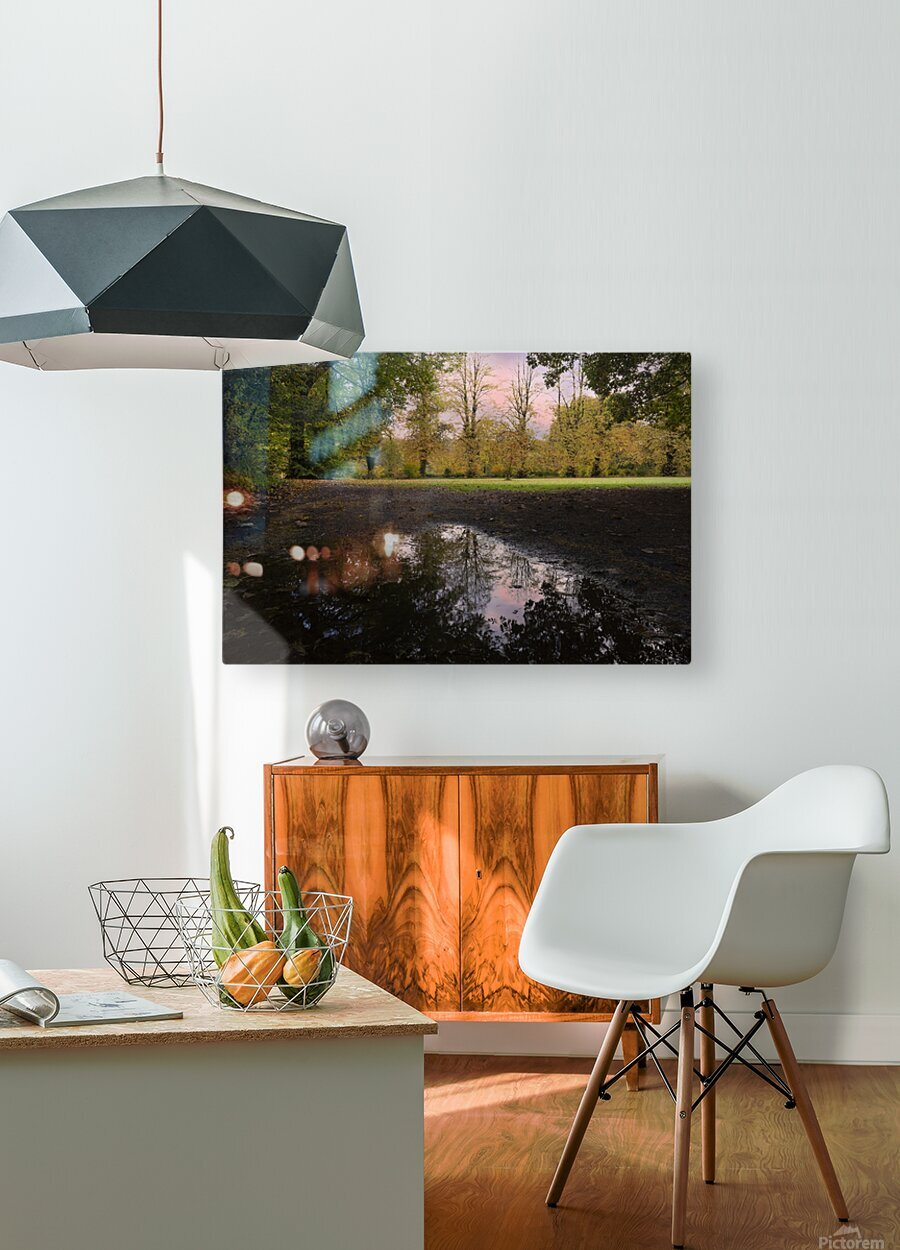 Autumn reflections in a field  HD Metal print with Floating Frame on Back