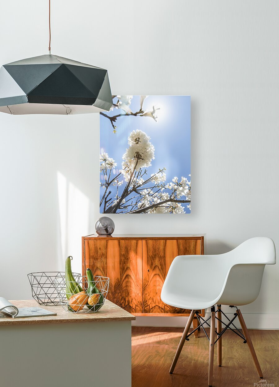 Bright white - glow  HD Metal print with Floating Frame on Back