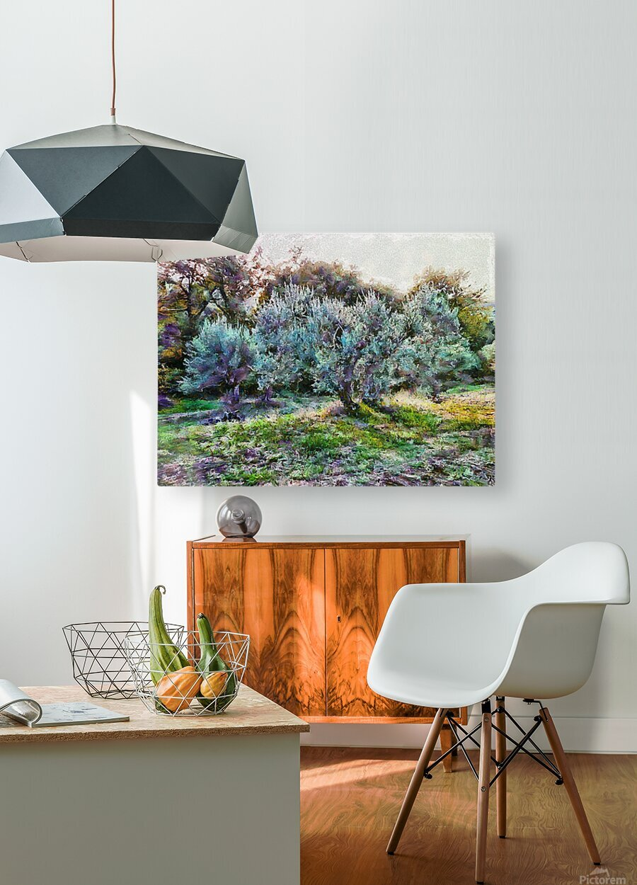 Colorful Olive Grove  HD Metal print with Floating Frame on Back