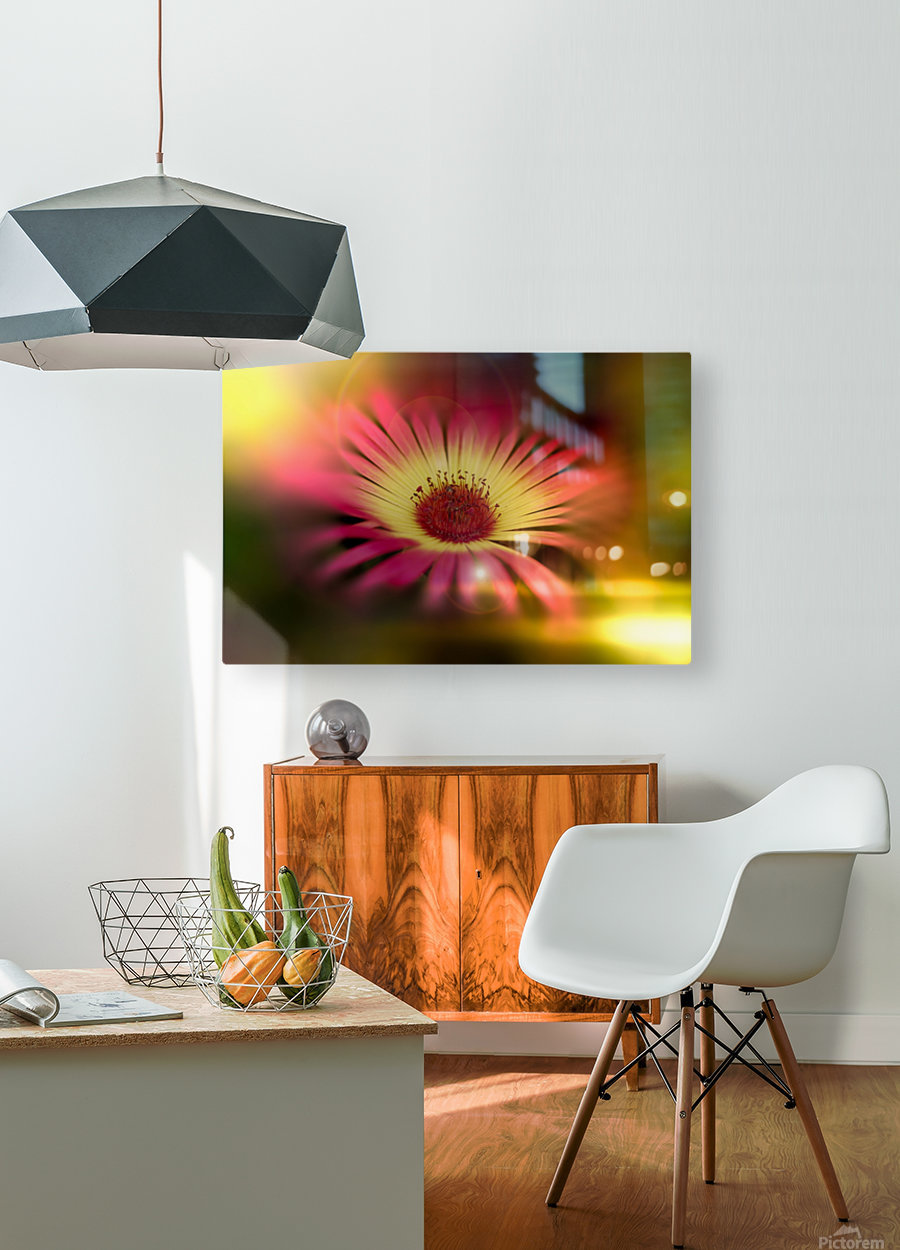 little sunshine  HD Metal print with Floating Frame on Back
