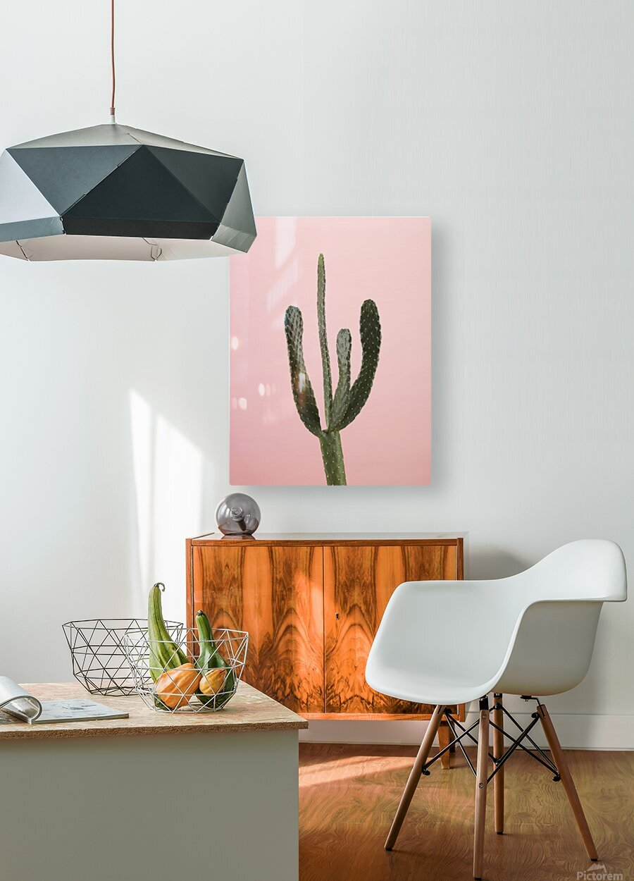 Cactus plant  HD Metal print with Floating Frame on Back