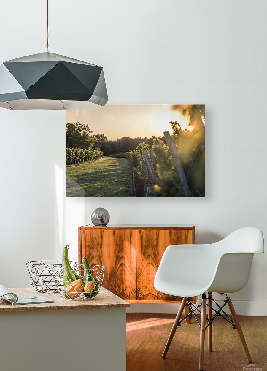 Lussac  HD Metal print with Floating Frame on Back