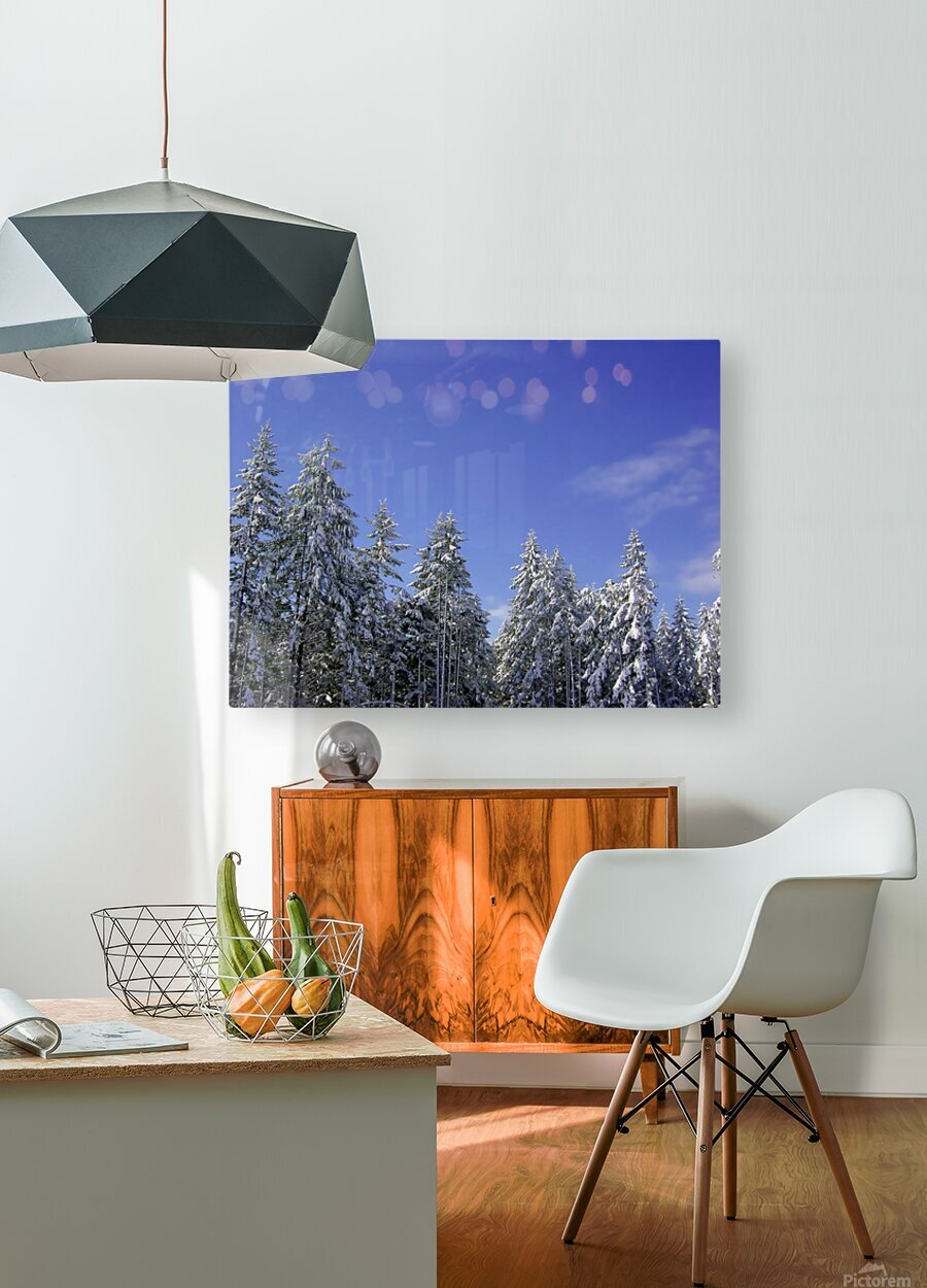 First Snow  HD Metal print with Floating Frame on Back