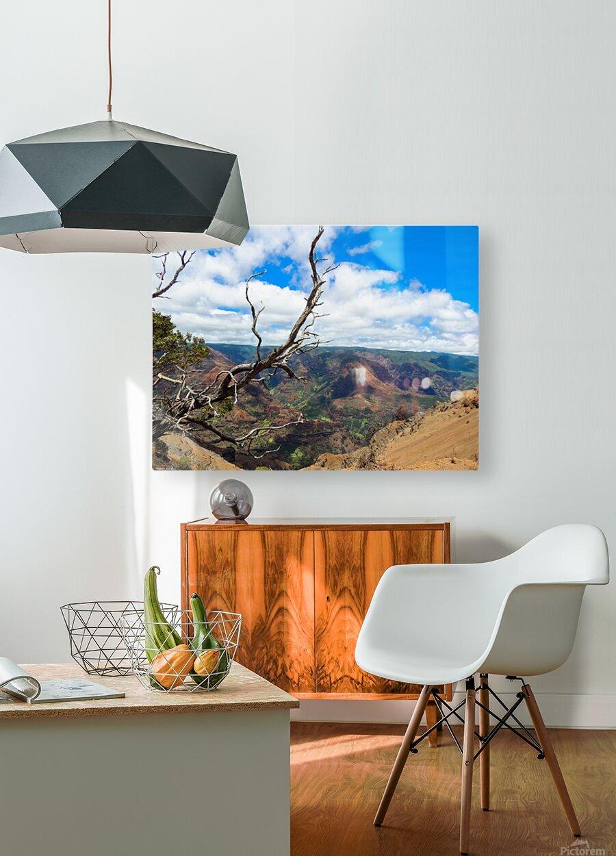 Wild Kauai 2  HD Metal print with Floating Frame on Back