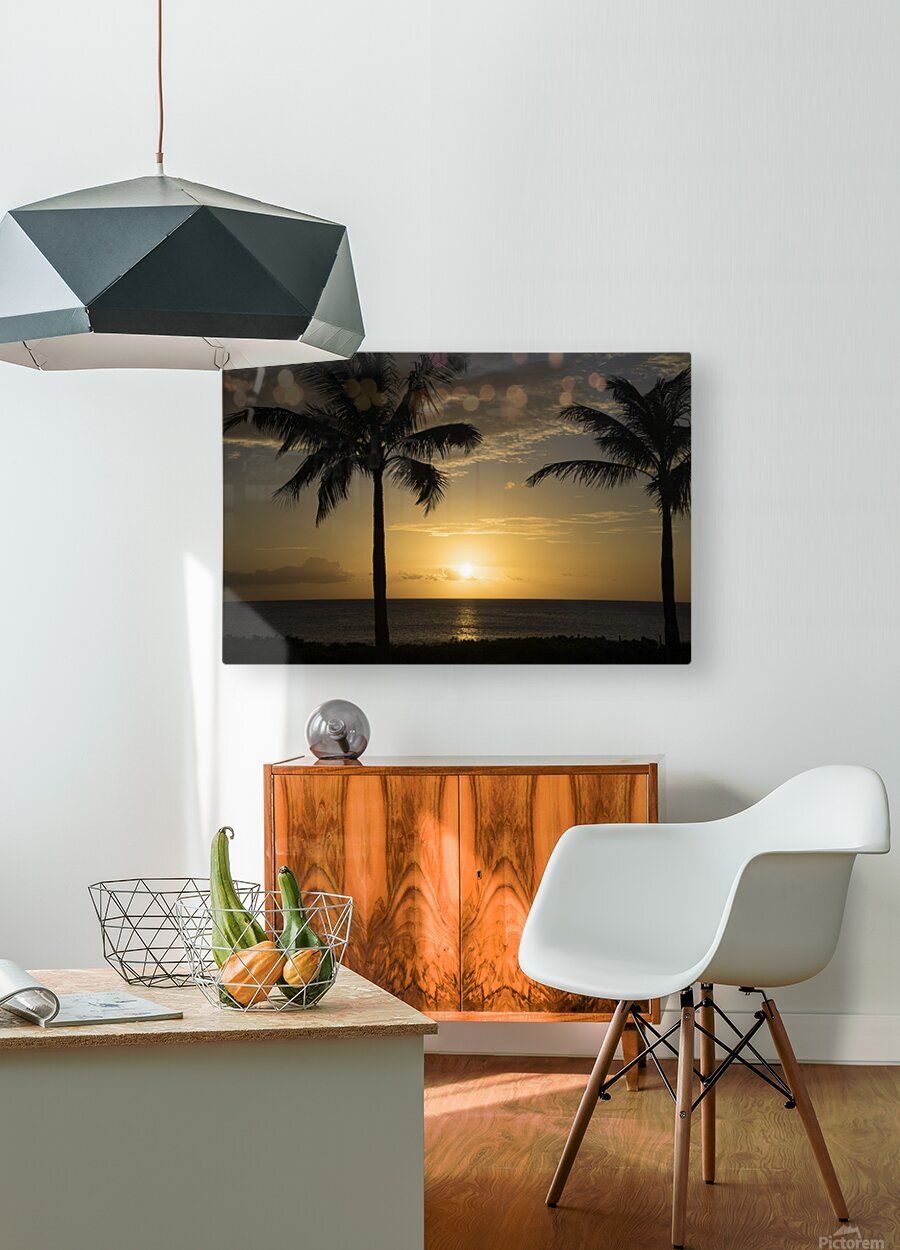 Perfect Day  HD Metal print with Floating Frame on Back