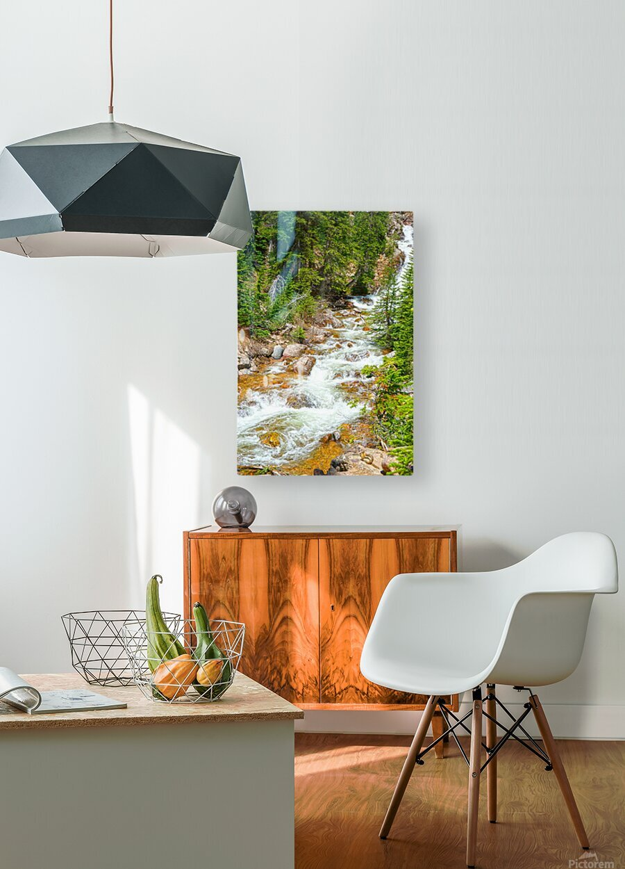 Spring Runoff Chipmunk  HD Metal print with Floating Frame on Back