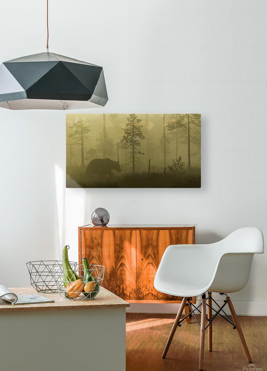 Morning Fog  HD Metal print with Floating Frame on Back