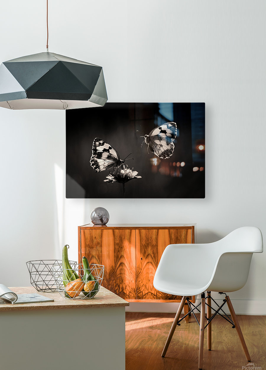 Medioluto norteA±a  HD Metal print with Floating Frame on Back