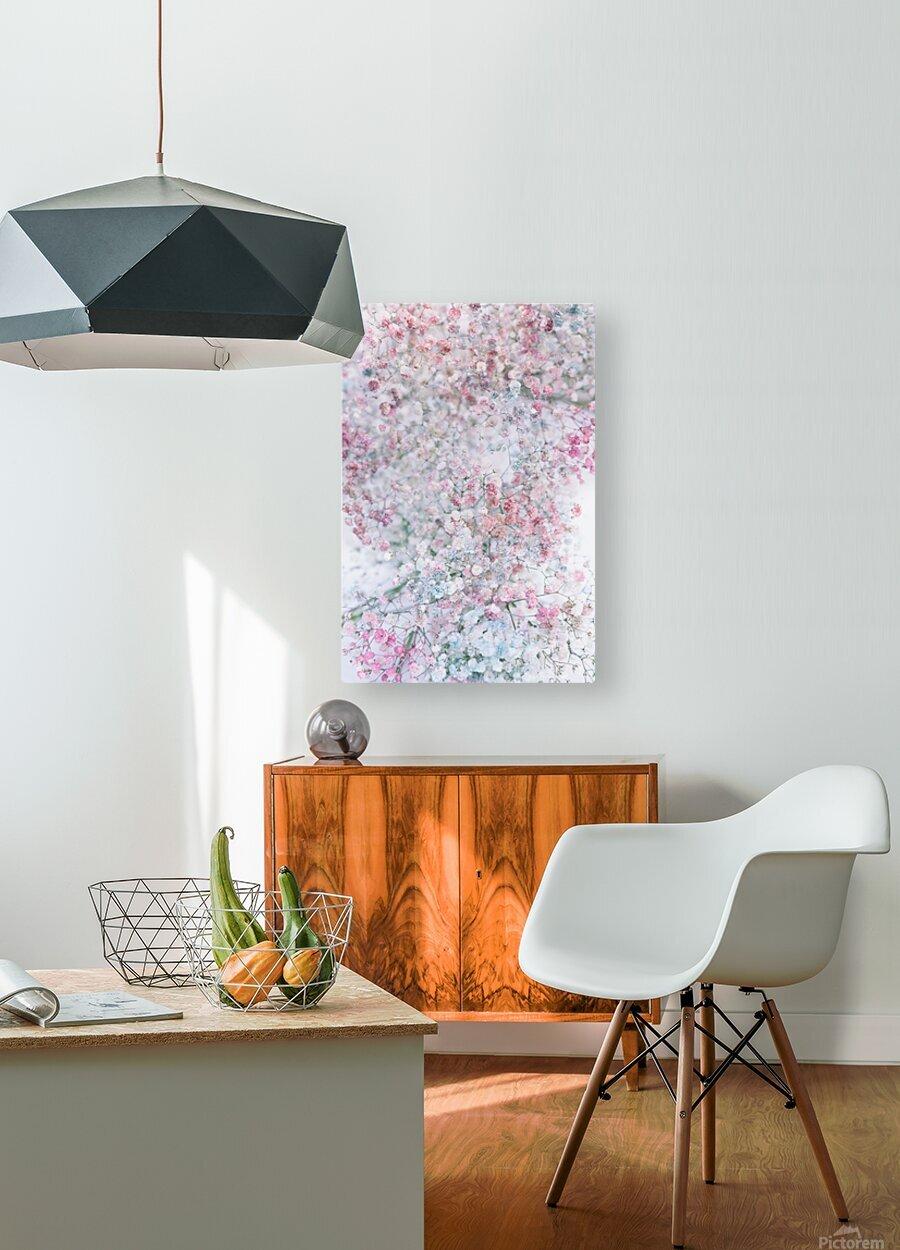 Daltana Pastel Floral Dianola  HD Metal print with Floating Frame on Back
