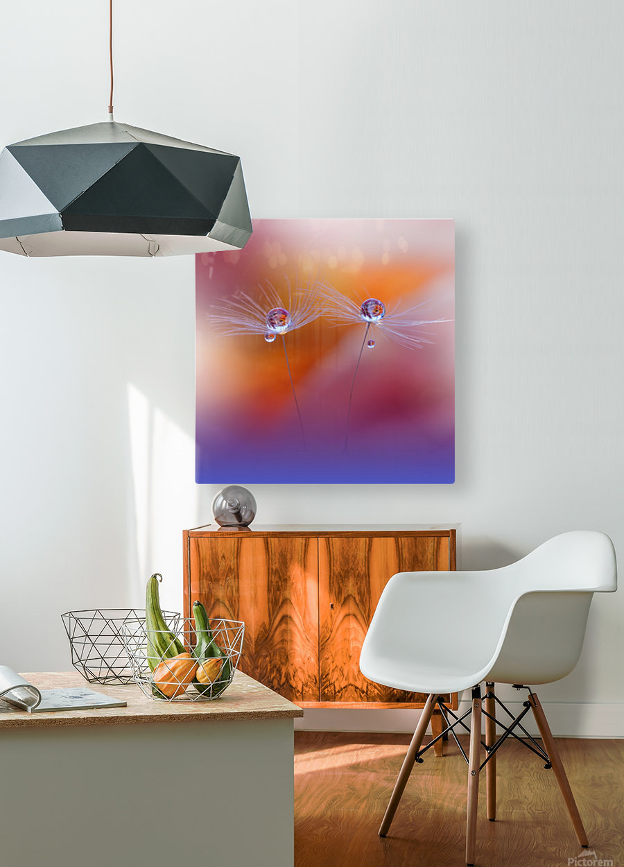 Two Worlds by Juliana Nan   Impression métal HD avec cadre flottant sur le dos