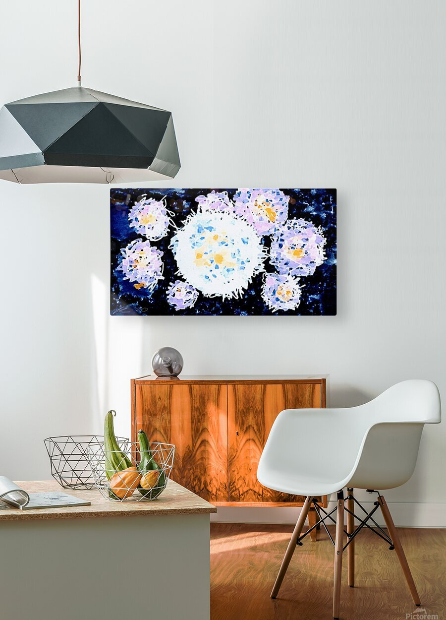 Quantum  HD Metal print with Floating Frame on Back