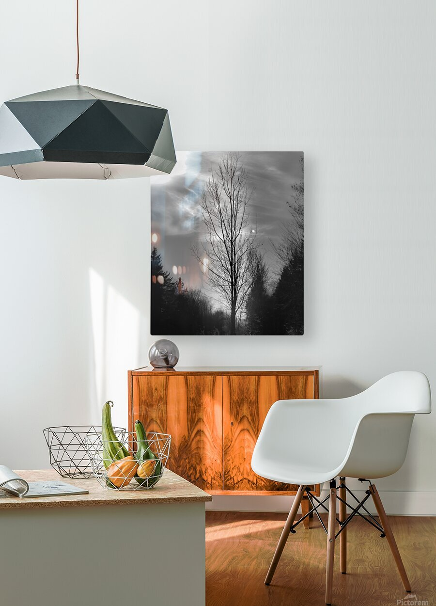 Assombri  HD Metal print with Floating Frame on Back