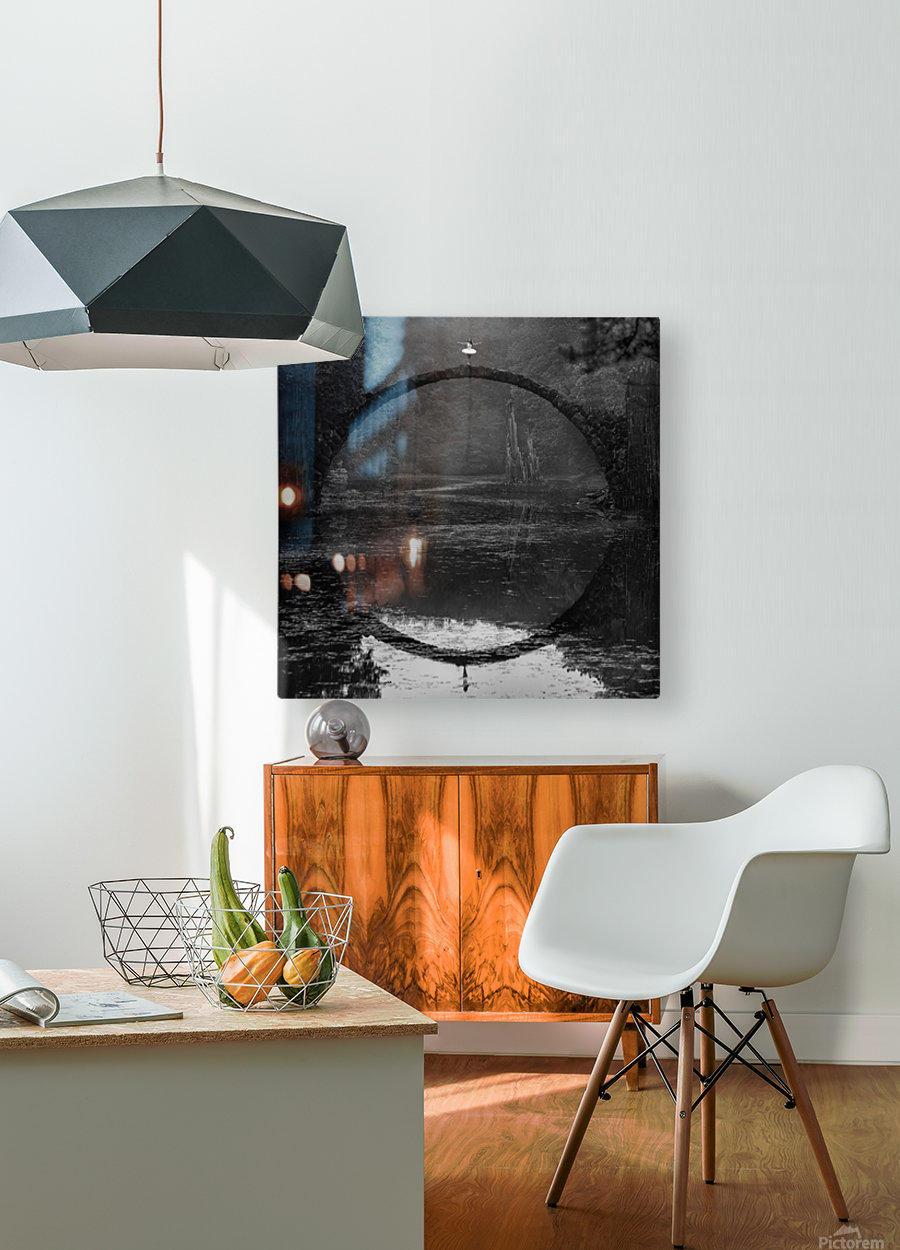 Ring  HD Metal print with Floating Frame on Back