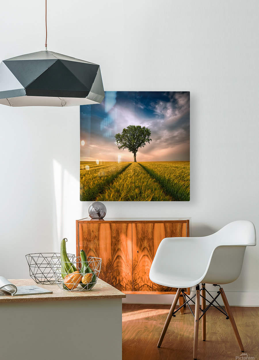 One by Piotr Krol (Bax)  HD Metal print with Floating Frame on Back